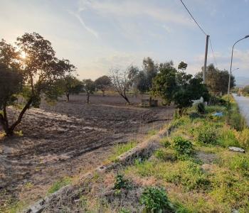 Terreno con ampio fronte strada e pozzo